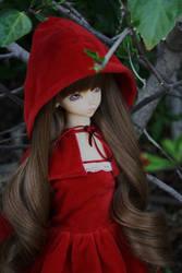 Red Riding Hood by inu-yoyochan