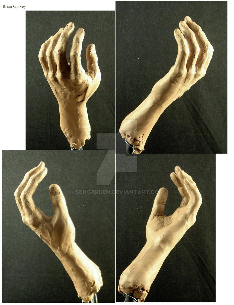 Hand Study by sengarden