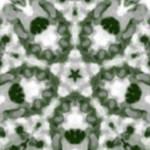 Kaleidoscope 66