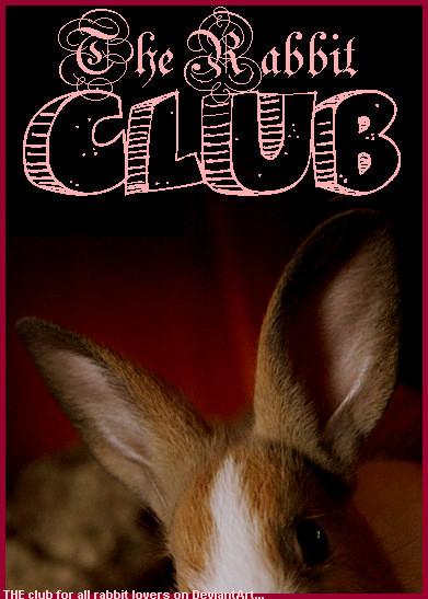 ID contest entry 1 - Fleagirl by RabbitClub