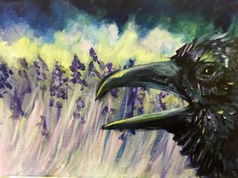 Lavender Crow