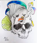 skulls and mushrooms by Shannie-Sketches