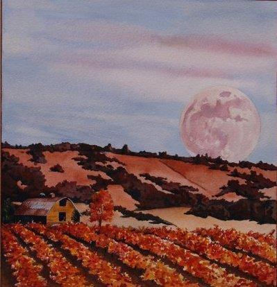 Vineyard by wyldcoloure