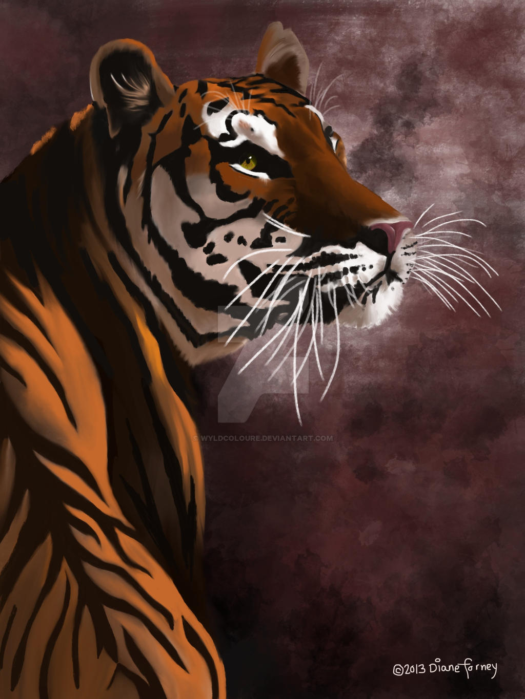 Bengal by wyldcoloure