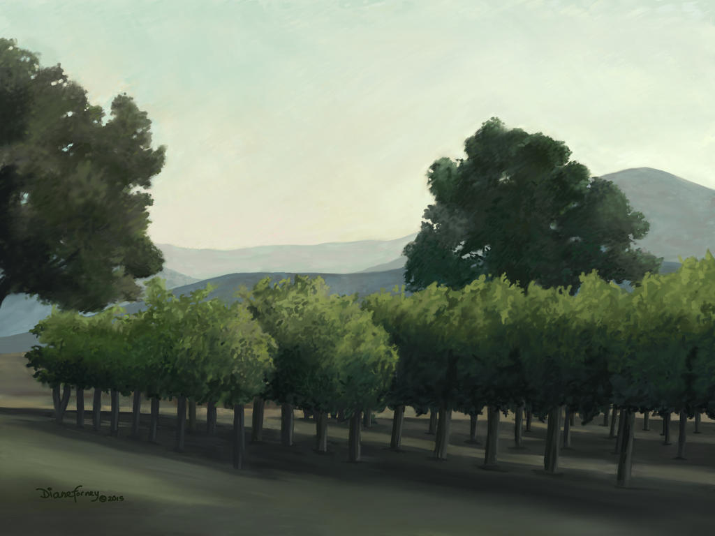 Sonoma Morning by wyldcoloure