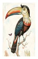 Faberge Toucan by johnnebraska