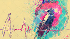 Murder The Crow