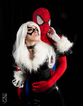 Black Cat and Spider Man