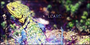 Lizard by Leon-GFX