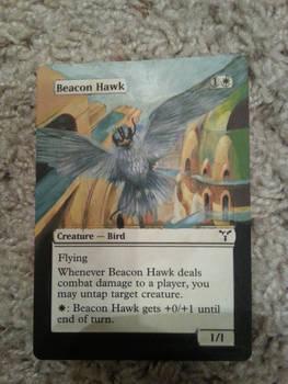 Magic The Gathering Art Card - Beacon Hawk