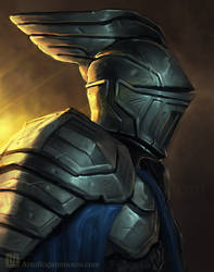Steve-The Socially Awkward Knight