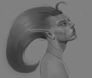 Gray Scale Practice-Wild Elf