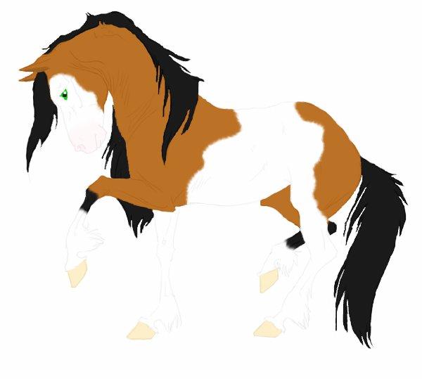 Pinto Horse Bay Pinto Horse by