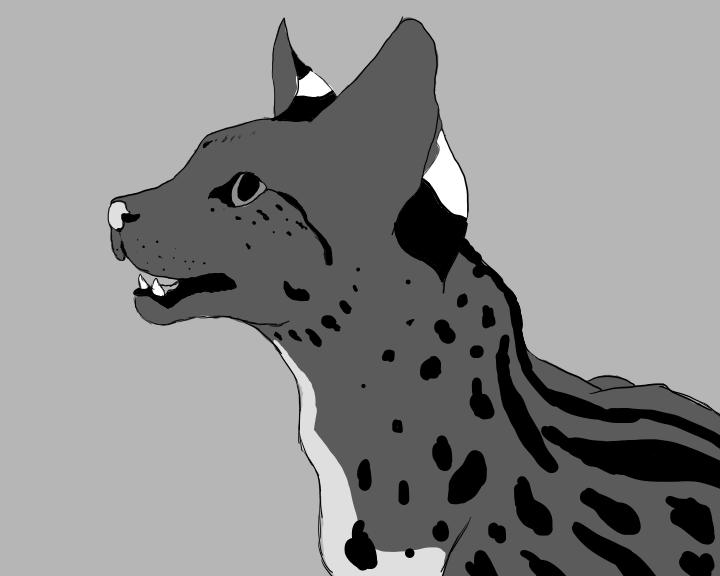Serval by Heimii
