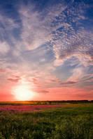 pink sunset by kiritani-akira