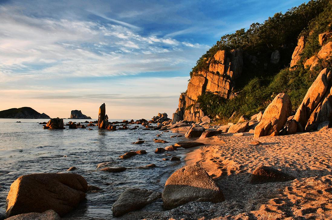 wild beach by kiritani-akira