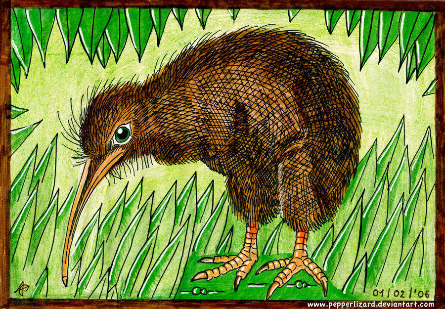 how to cut a kiwi bird