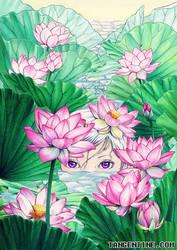 Lotus by firedaemon