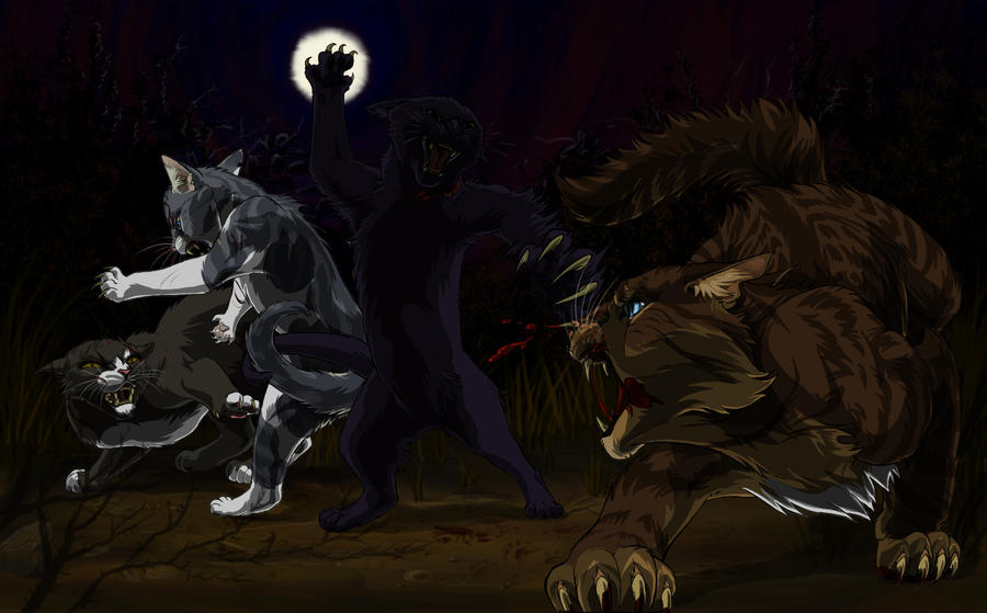 Hollyleaf Vs Hawkfrost by Alex-Harrier