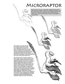 Microraptor Tutorial