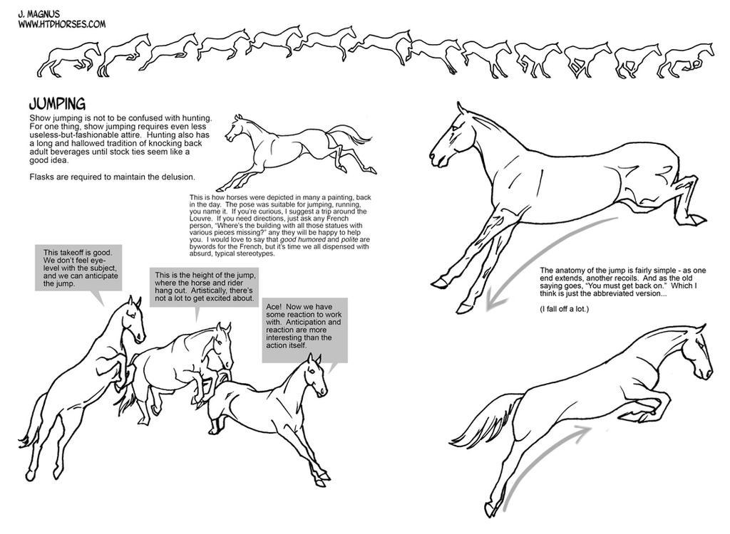 Horse Jumping Tutorial by sketcherjak on DeviantArt