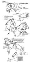 How to draw tack Optional Extras