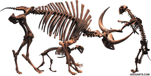 Tutorial: Bison latifrons and smilodon attack!