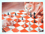 A Cat and Mouse Game