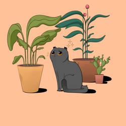 Meow by Moysak-Art