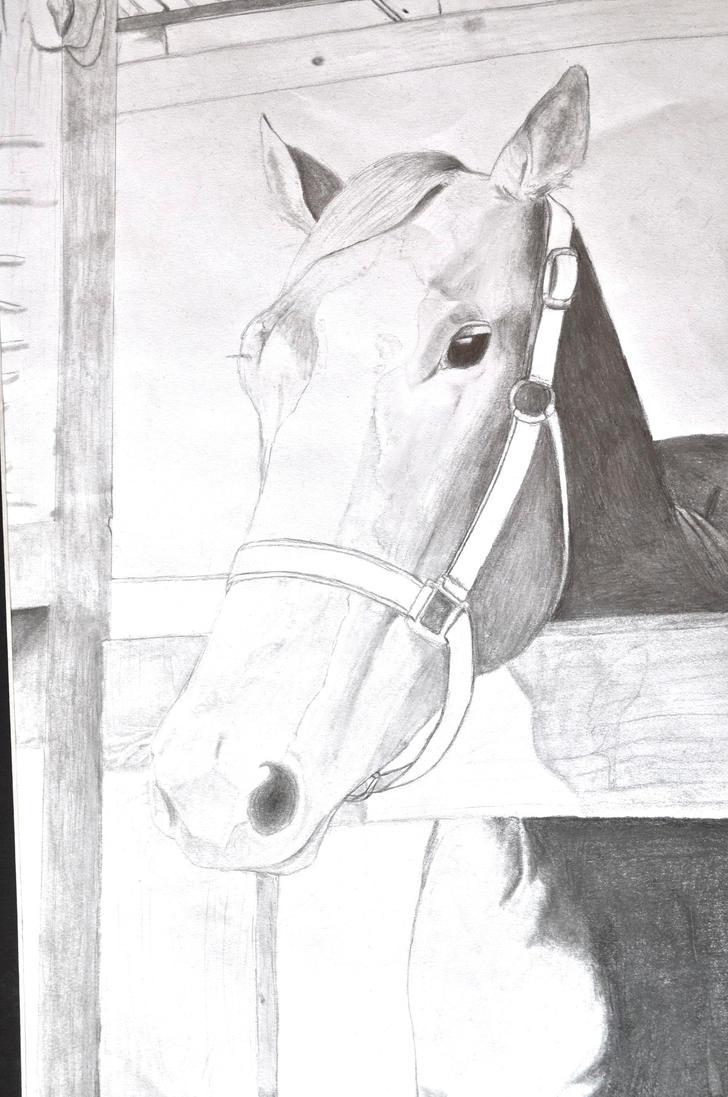 Rodeo Art by DoodleGirl67