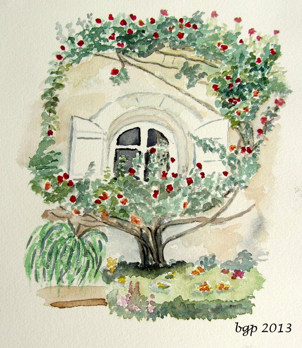 Le rosiers devant la fenetre by manette64
