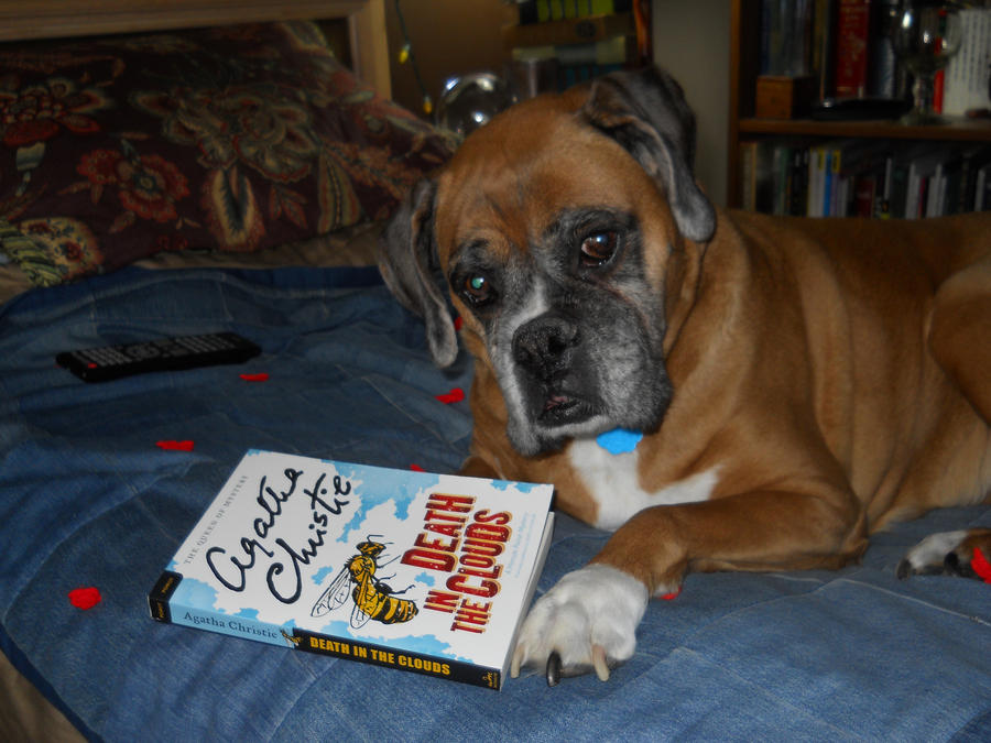 The Dog Who Reads Agatha Christie by Chaosfive-55
