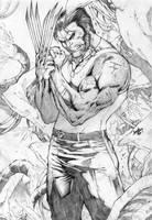 Wolverine by leonartgondim