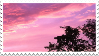 (f2u) sunsets stare into your soul by sinnamonstamps