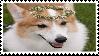 corgi stamp by sinnamonstamps