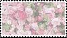 roses stamp 2 by sinnamonstamps