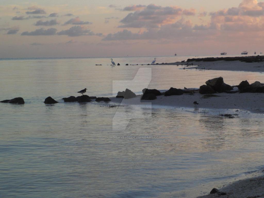 Beach Sunrise by Guadisaves02
