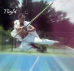 Kung Fu: Flight