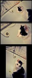 Bath Time by Renca-W