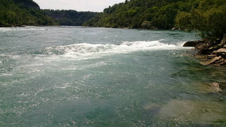 Niagara River - Edge of the Water