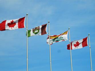 Hurray Flags~!
