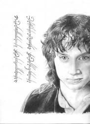 Frodo by alvarosm