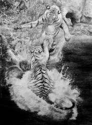 Tigers in the water by alvarosm