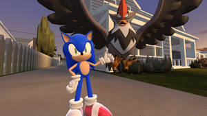 Sonic and his Staraptor