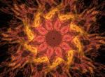 Abstract Orderism Fractal 66 - Floral Fractal