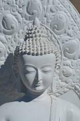Siddhartha by SilkRoses