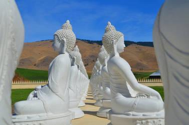 A meditation on order by SilkRoses