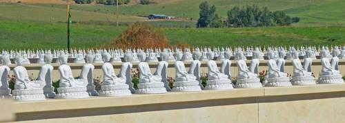 1000 Buddhas by SilkRoses