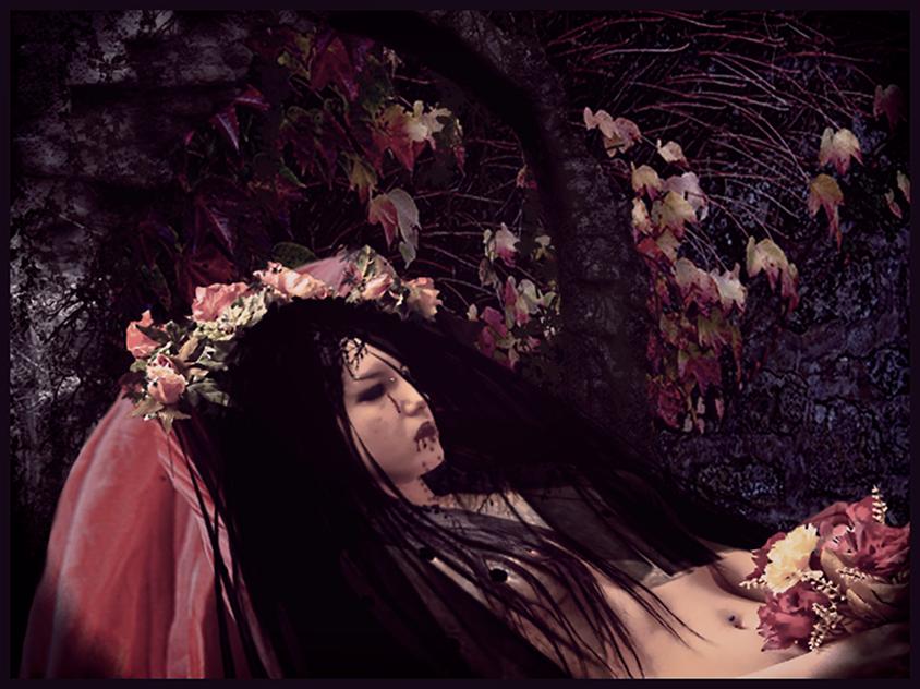 Where wild flowers rest... by Villenueve