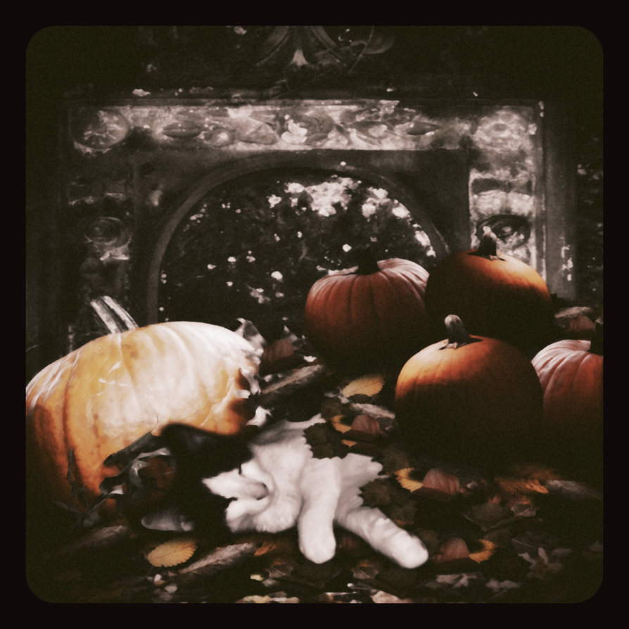 1st Halloween... by Villenueve